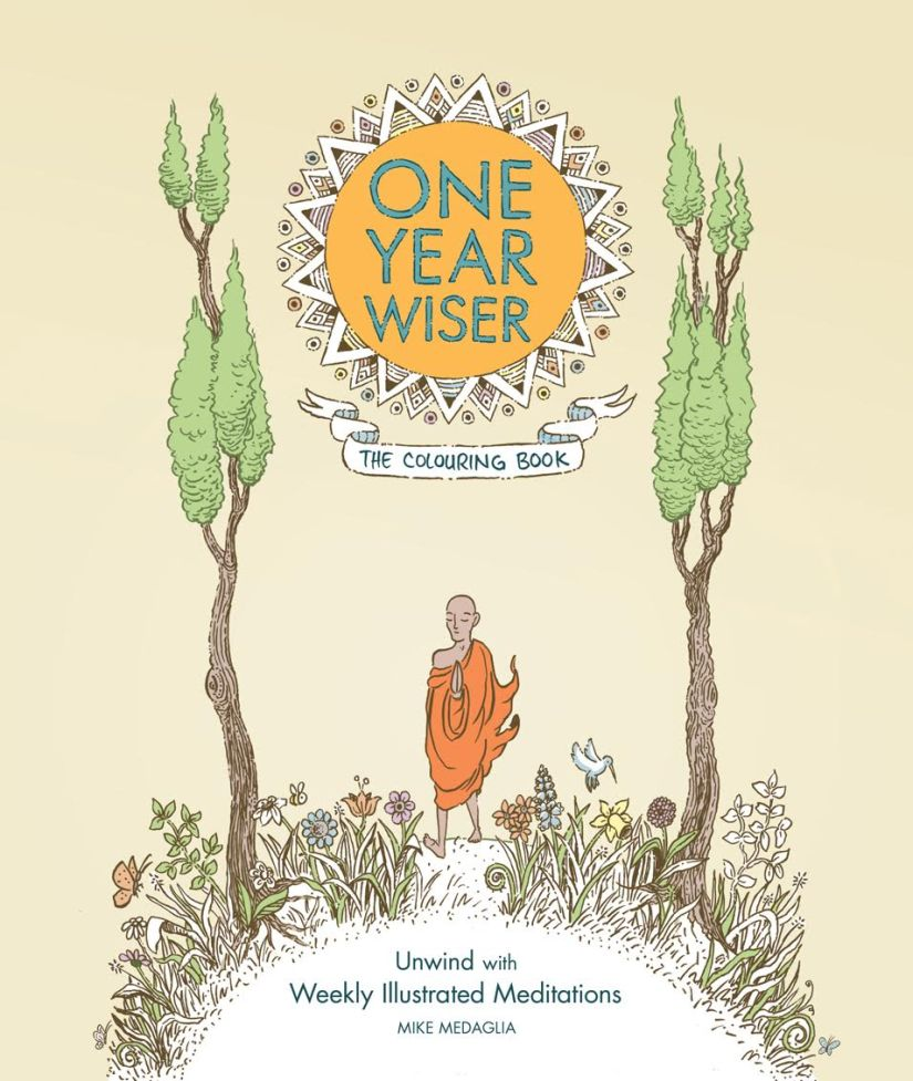 One Year Wiser cover