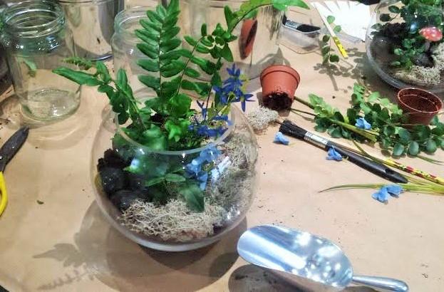terrarium making